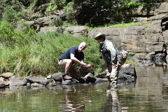 Wild Fly Fishing in the Karoo, fly fishing guided experience with Alan Hobson