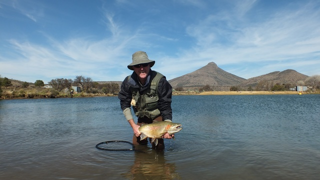 Trophy rainbow trout in the Karoo
