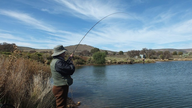 Trophy trout in the Karoo, Wild Fly Fishing in the Karoo, Somerset East, South Africa